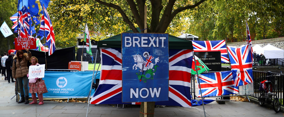 picture of sign from deminstrations saying brexit now