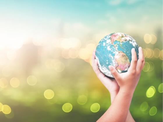 de 17 bærekraftsmålene