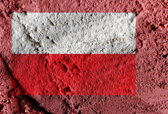 Image may contain: Red, Wall, Brick, Soil, Close-up.