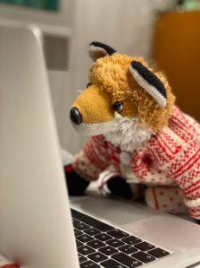 Computer Fox