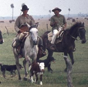 Menn til hest i Argentina.