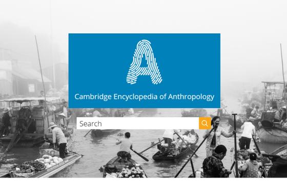 Bildet kan inneholde: vannfartøy, båter og båtliv - utstyr og forsyninger, reklame, padle, sjøarkitektur.