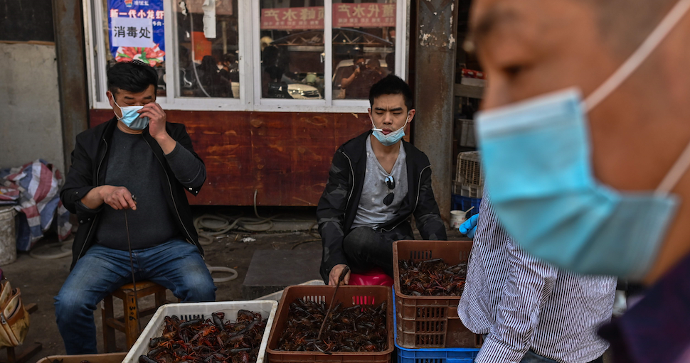 The food market in Wuhan, China
